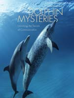 Dolphin Mysteries,  from Yale University Press