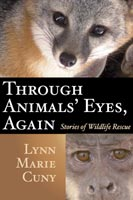 Through Animals' Eyes, Again